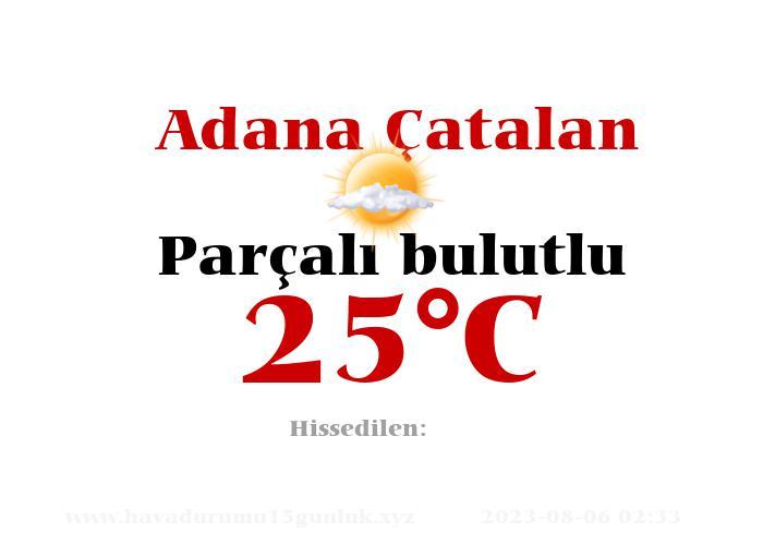 Hava Durumu Adana Çatalan