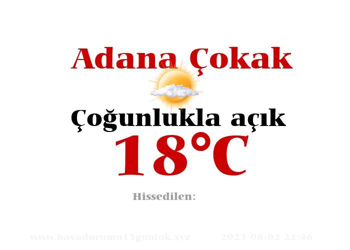 Hava Durumu Adana Çokak