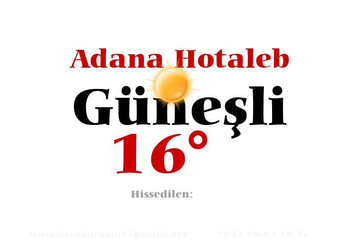 Adana Hotaleb Hava Durumu