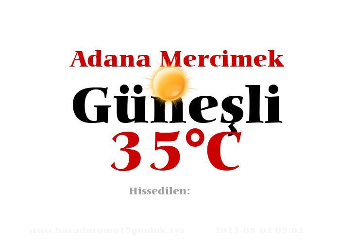 Hava Durumu Adana Mercimek