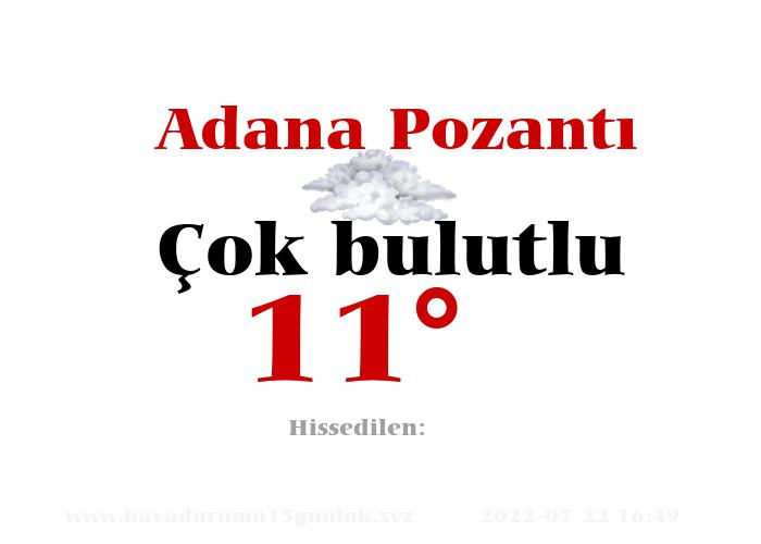Adana Pozantı Hava Durumu