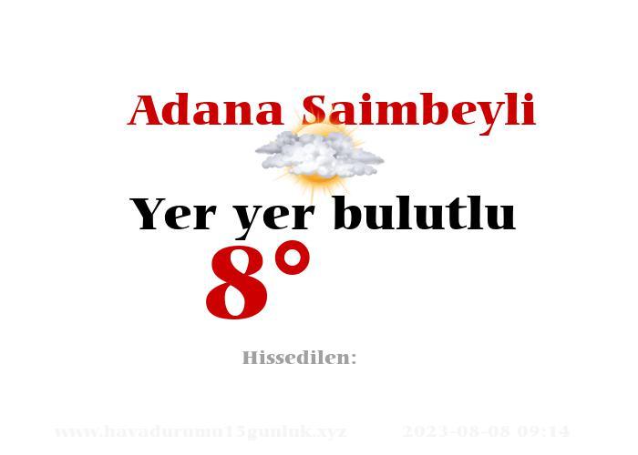 adana-saimbeyli hava durumu