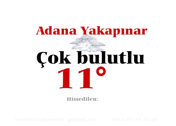 Adana Yakapınar Hava Durumu