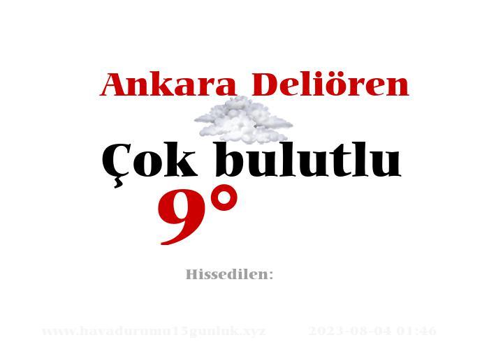 Ankara Deliören Hava Durumu
