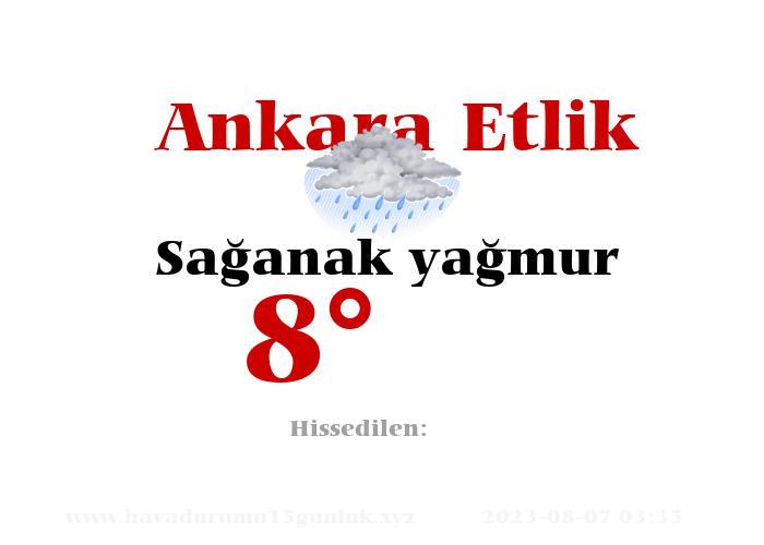 Ankara Etlik Hava Durumu
