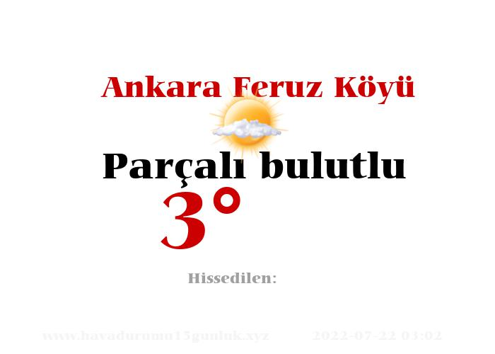 Ankara Feruz Köyü Hava Durumu