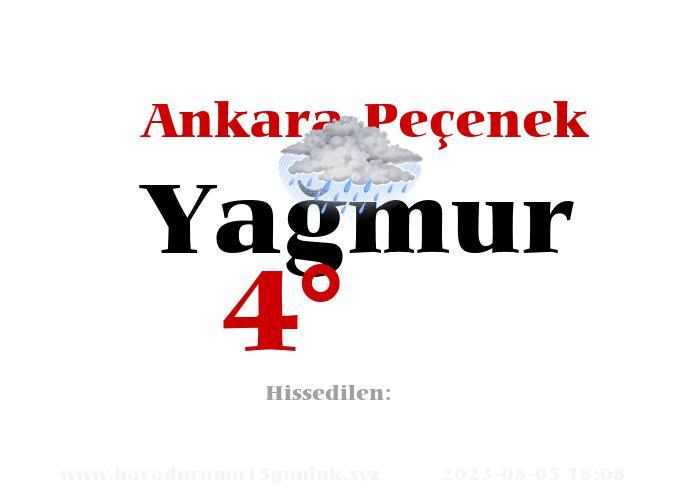 Ankara Peçenek Hava Durumu