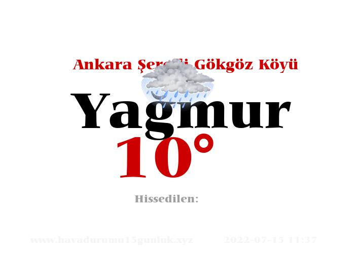 Ankara Şerefli Gökgöz Köyü Hava Durumu
