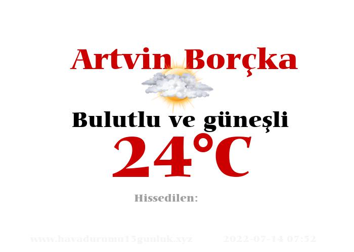 Hava Durumu Artvin Borçka