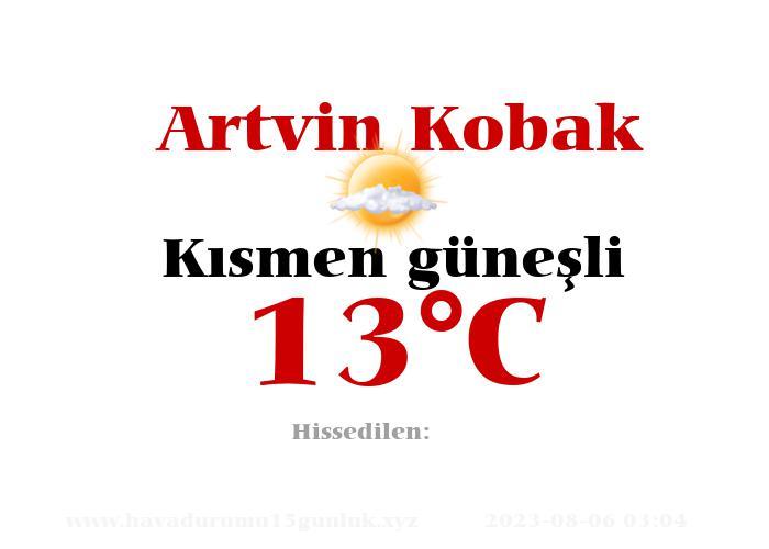 Hava Durumu Artvin Kobak