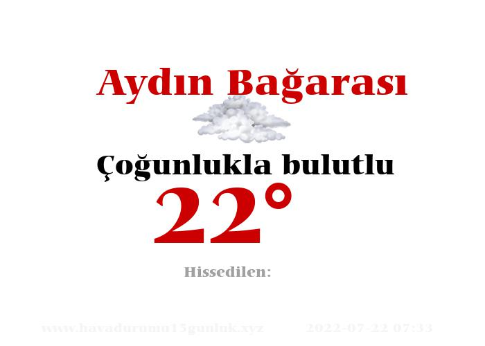 aydin-bagarasi hava durumu