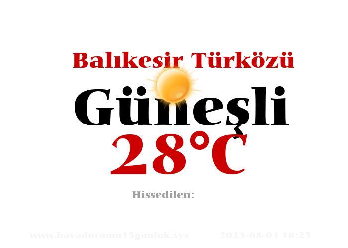 Hava Durumu Balıkesir Türközü