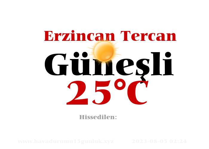 Hava Durumu Erzincan Tercan
