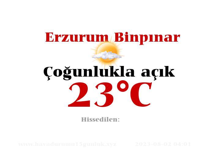 Hava Durumu Erzurum Binpınar