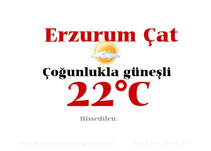 Hava Durumu Erzurum Çat