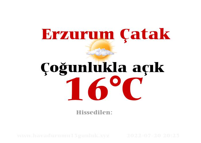 Hava Durumu Erzurum Çatak