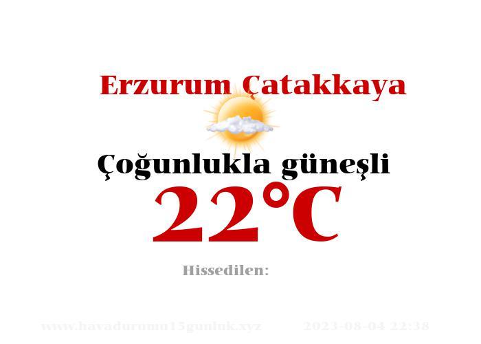 Hava Durumu Erzurum Çatakkaya
