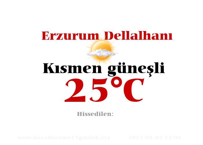 Hava Durumu Erzurum Dellalhanı
