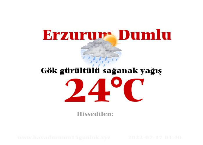 Hava Durumu Erzurum Dumlu