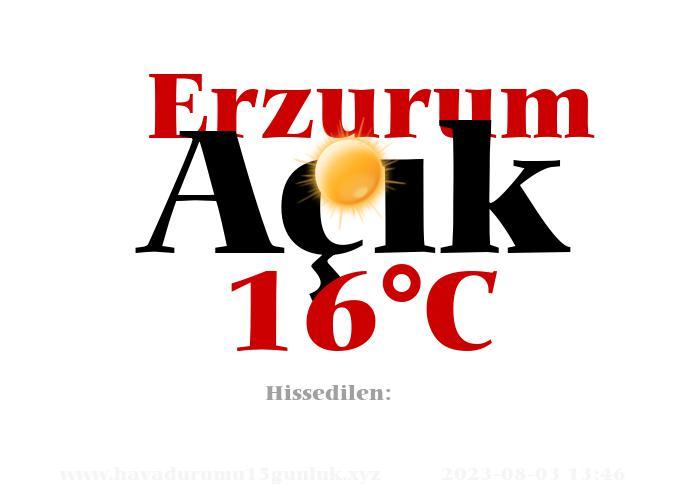 Hava Durumu Erzurum