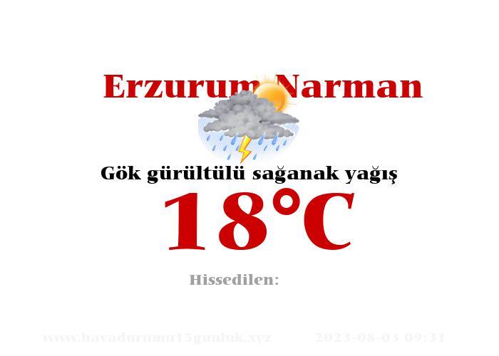 Hava Durumu Erzurum Narman
