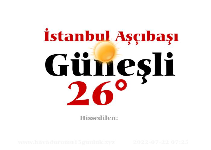 istanbul-ascibasi hava durumu