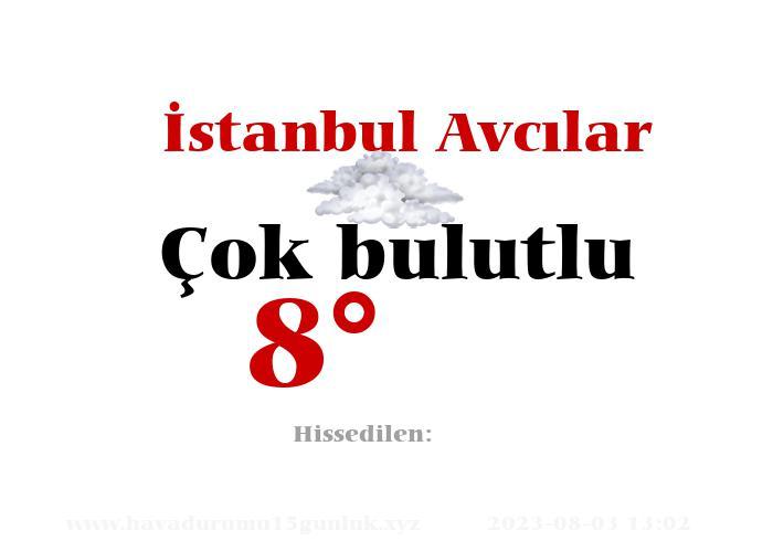 İstanbul Avcılar Hava Durumu