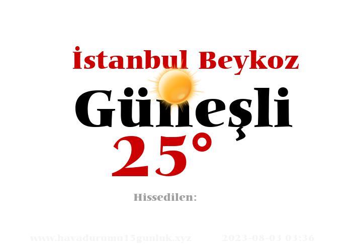 istanbul-beykoz hava durumu