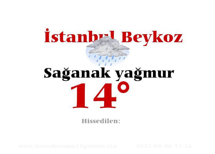 İstanbul Beykoz Hava Durumu