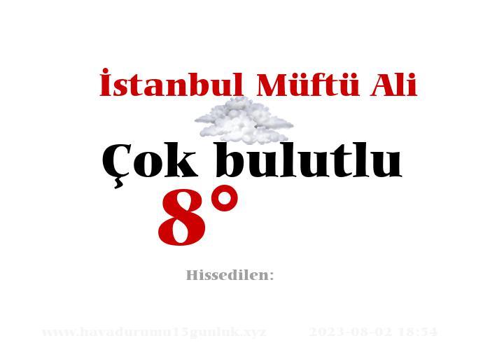 İstanbul Müftü Ali Hava Durumu