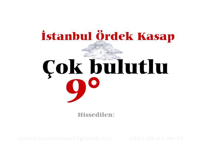İstanbul Ördek Kasap Hava Durumu