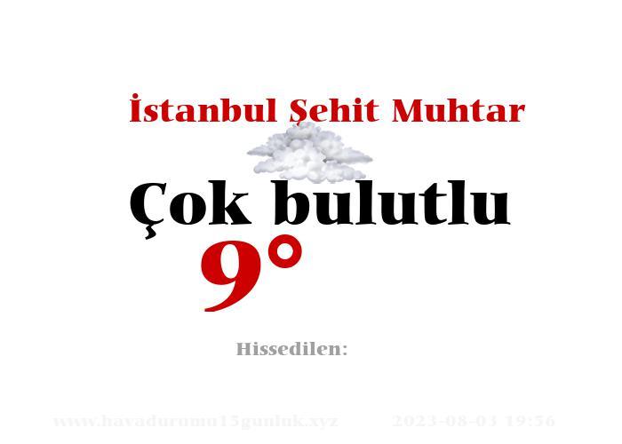 İstanbul Şehit Muhtar Hava Durumu