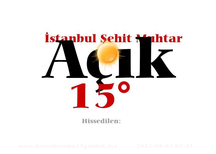 istanbul-sehit-muhtar hava durumu