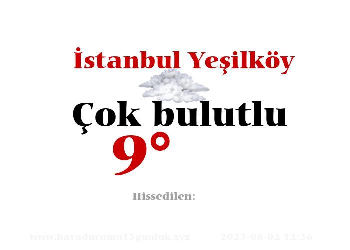 İstanbul Yeşilköy Hava Durumu