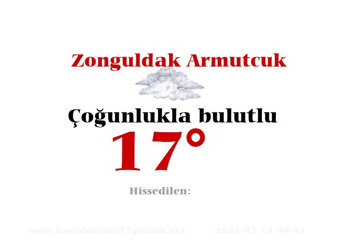 zonguldak-armutcuk hava durumu